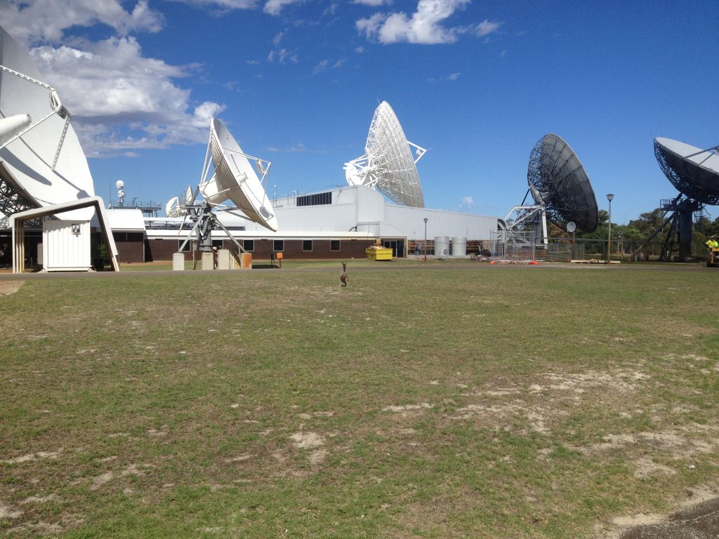 Satellite kangaroo gnangara