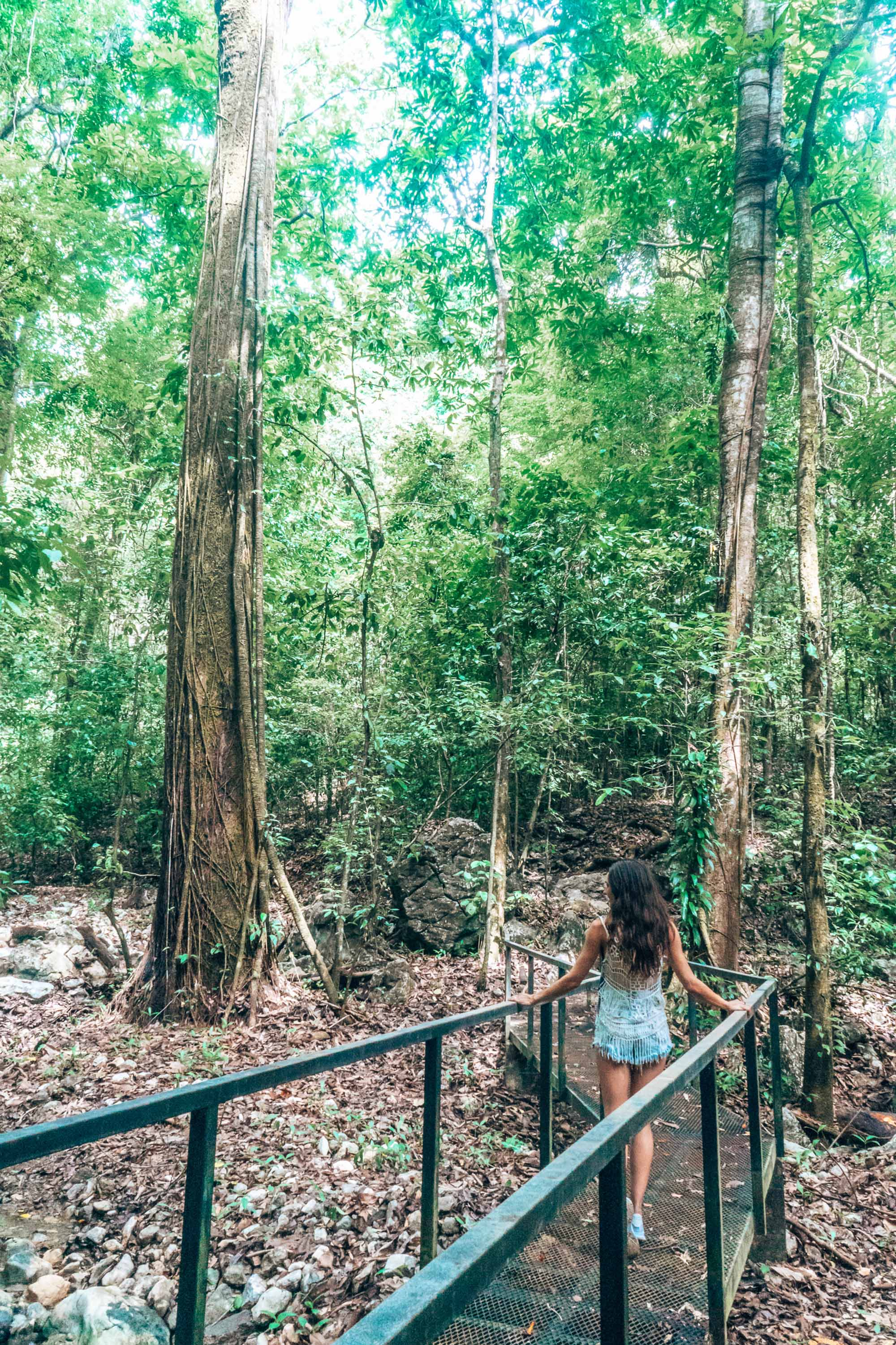 Cabo Blanco Nature Reserve Costa Rica Nicoya Peninsula